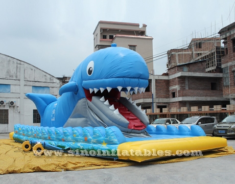 giant inflatable whale slide with mobile mouth